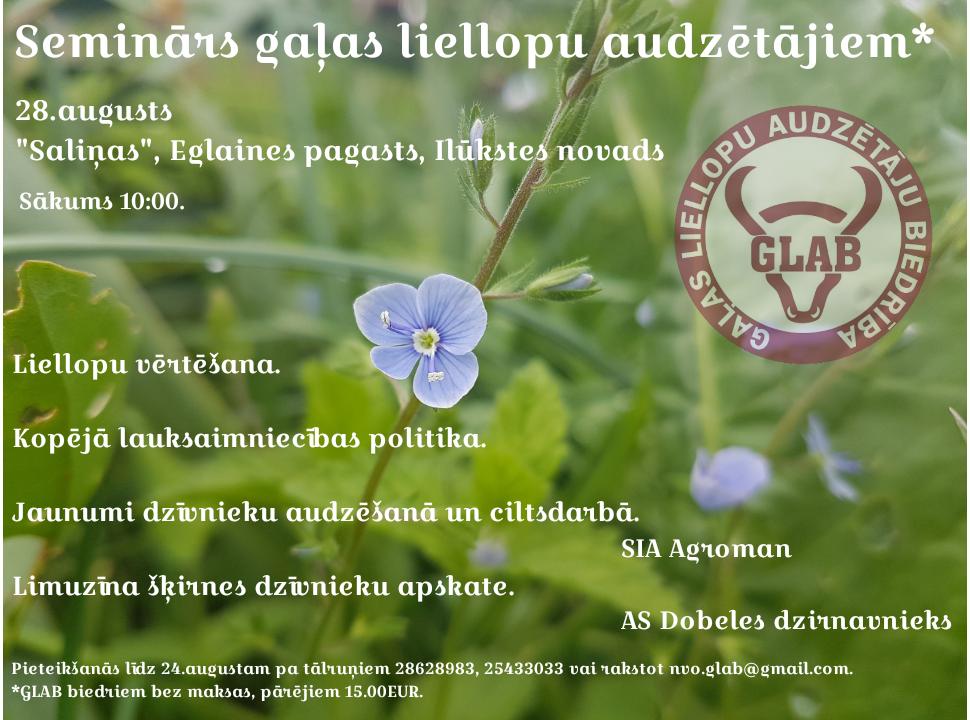 GLAB_2808